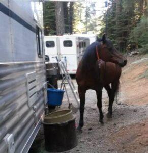 Karen Chaton at wild west ride