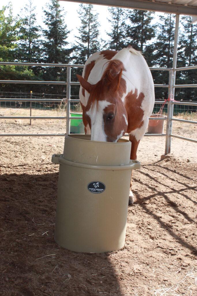 PG FEEDER PLUS HORSE 021